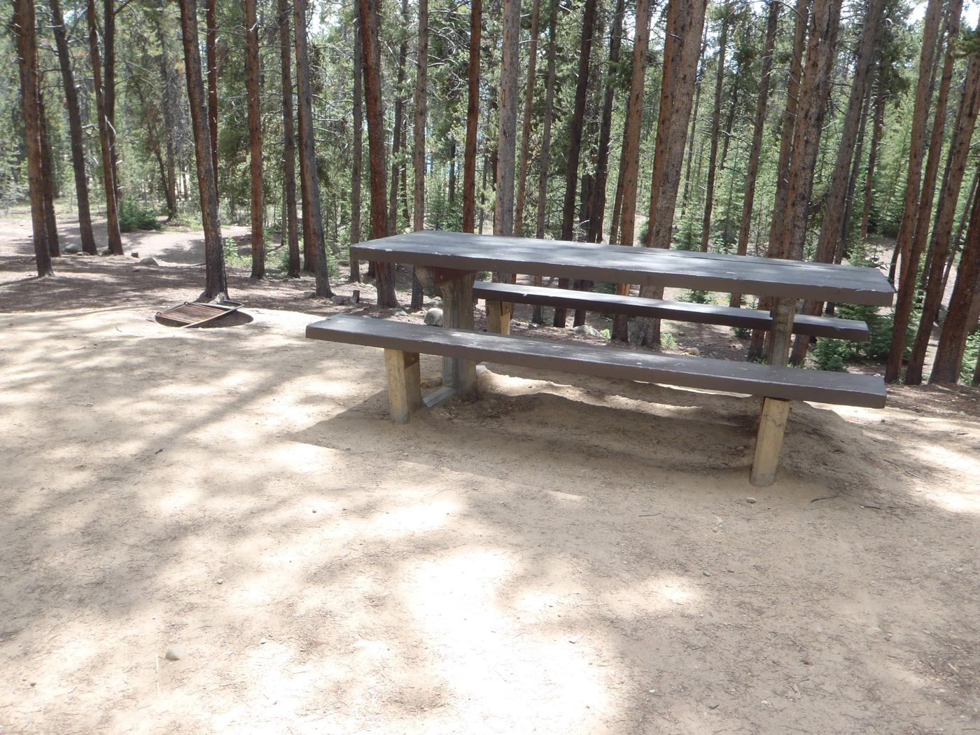 Baby Doe Campground, Site 31 picnic table and fire ring