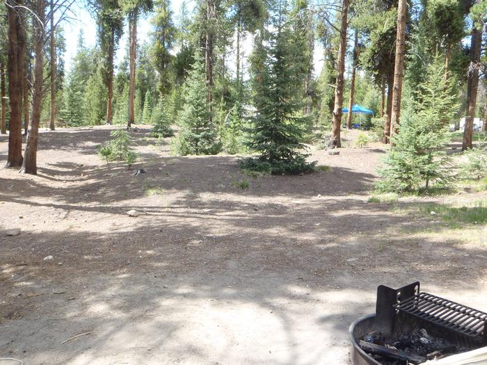 Baby Doe Campground, site 33 clearing