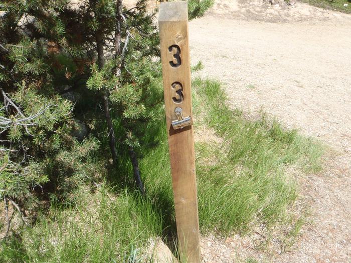 Baby Doe Campground, site 33 marker