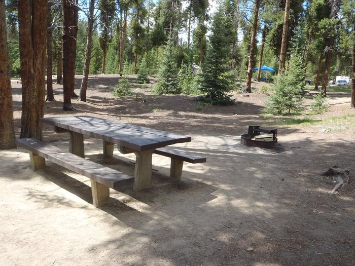Baby Doe Campground, site 33 picnic table and fire ring