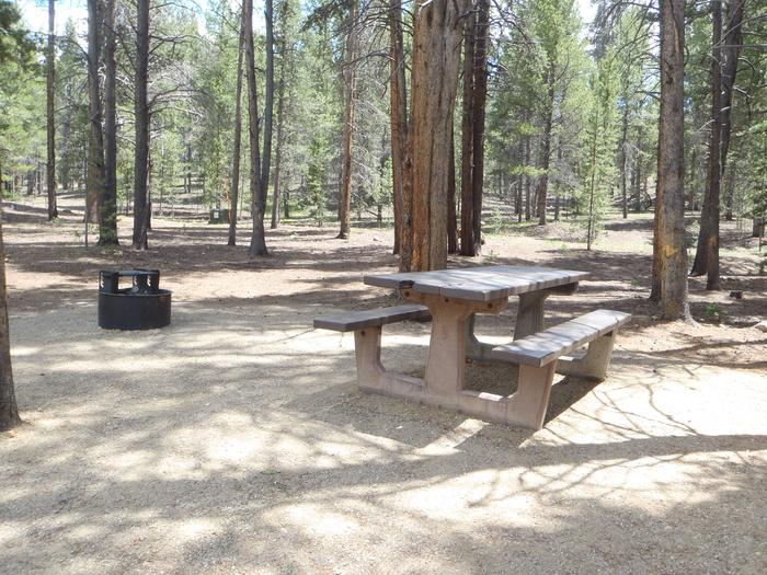Father Dyer Campground, site 5picnic table and fire ring