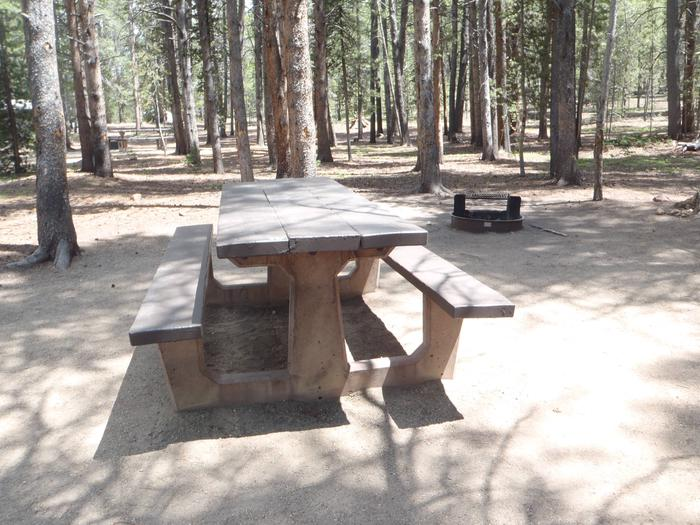 Father Dyer Campground, site 7picnic table and fire ring