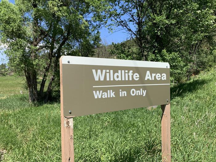Wildlife Area Adjacent to Campground
