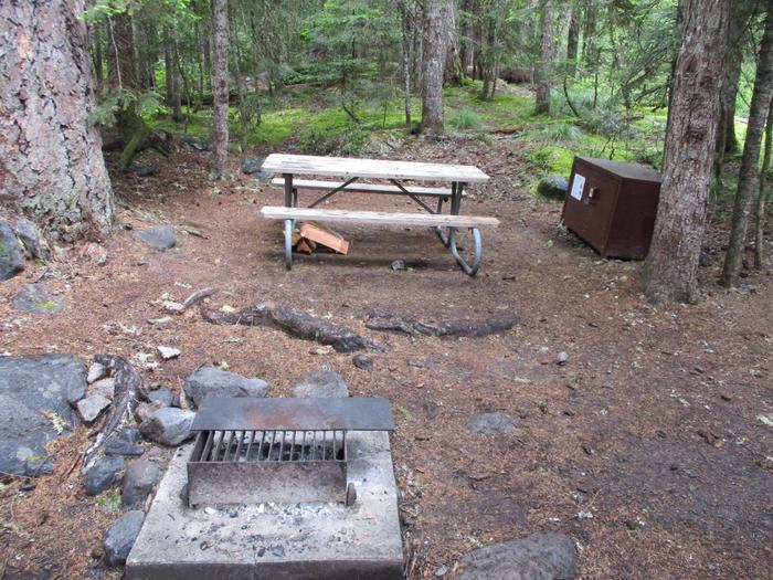 Picnic Table and Fire ring and Bear box