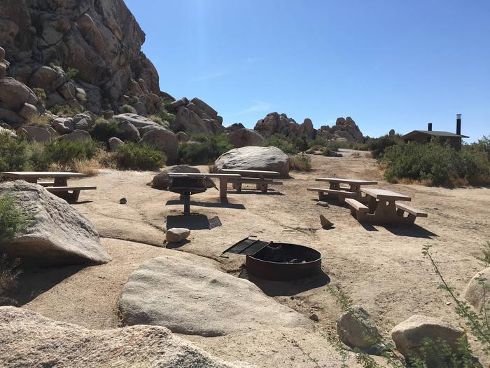 Indian Cove Group Site 9 AmenitiesAmenities: BBQ Grill, Tables and In-Ground Fire Pit