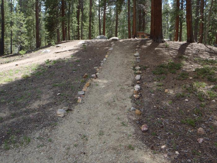 Father Dyer Campground, site 11 path