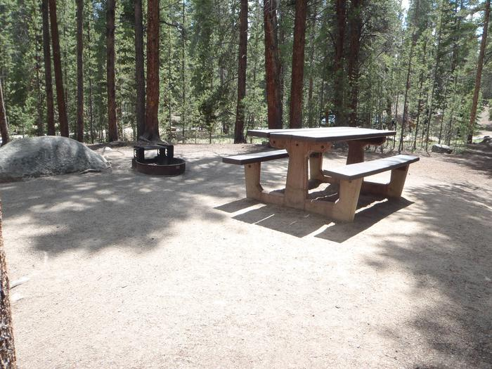 Father Dyer Campground, site 11 picnic table and fire ring