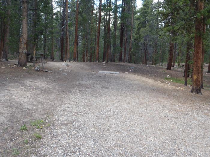Father Dyer Campground, site 21 parking 2