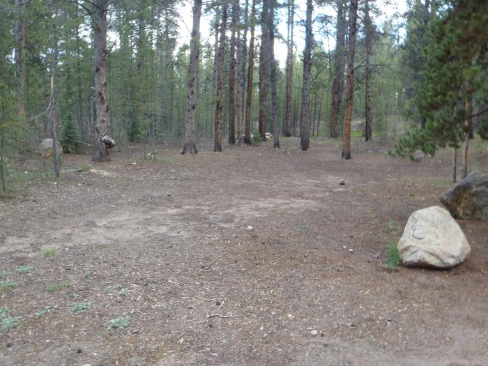 Father Dyer Campground, site 23 clearing
