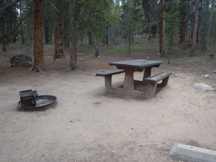 Father Dyer Campground, site 23 picnic table and fire ring