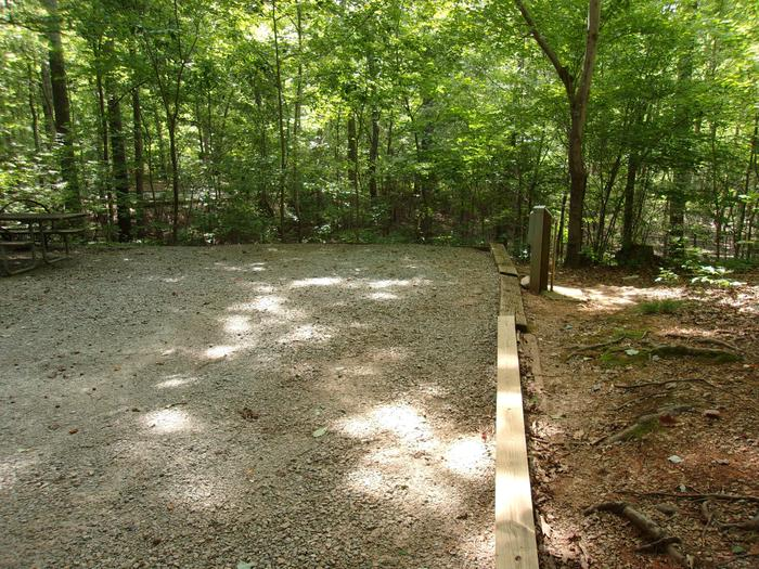 Rudds Creek CampgroundCampsite #46