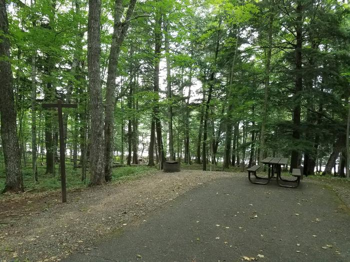 Left view of Lake Ottawa Campground campsite 4.