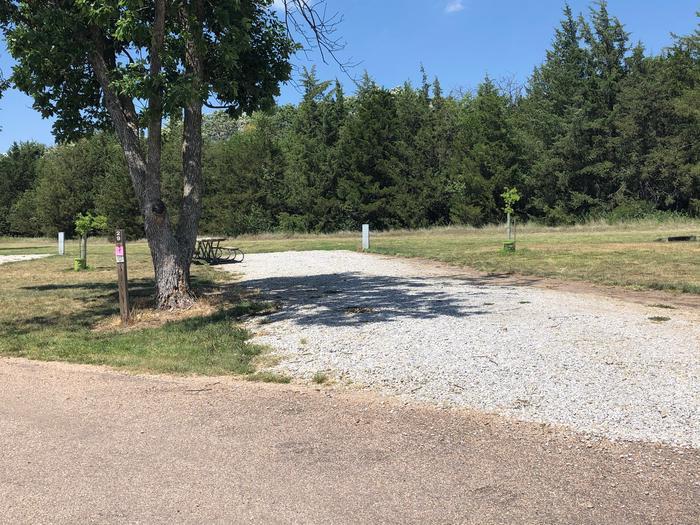 Campsite Site 29