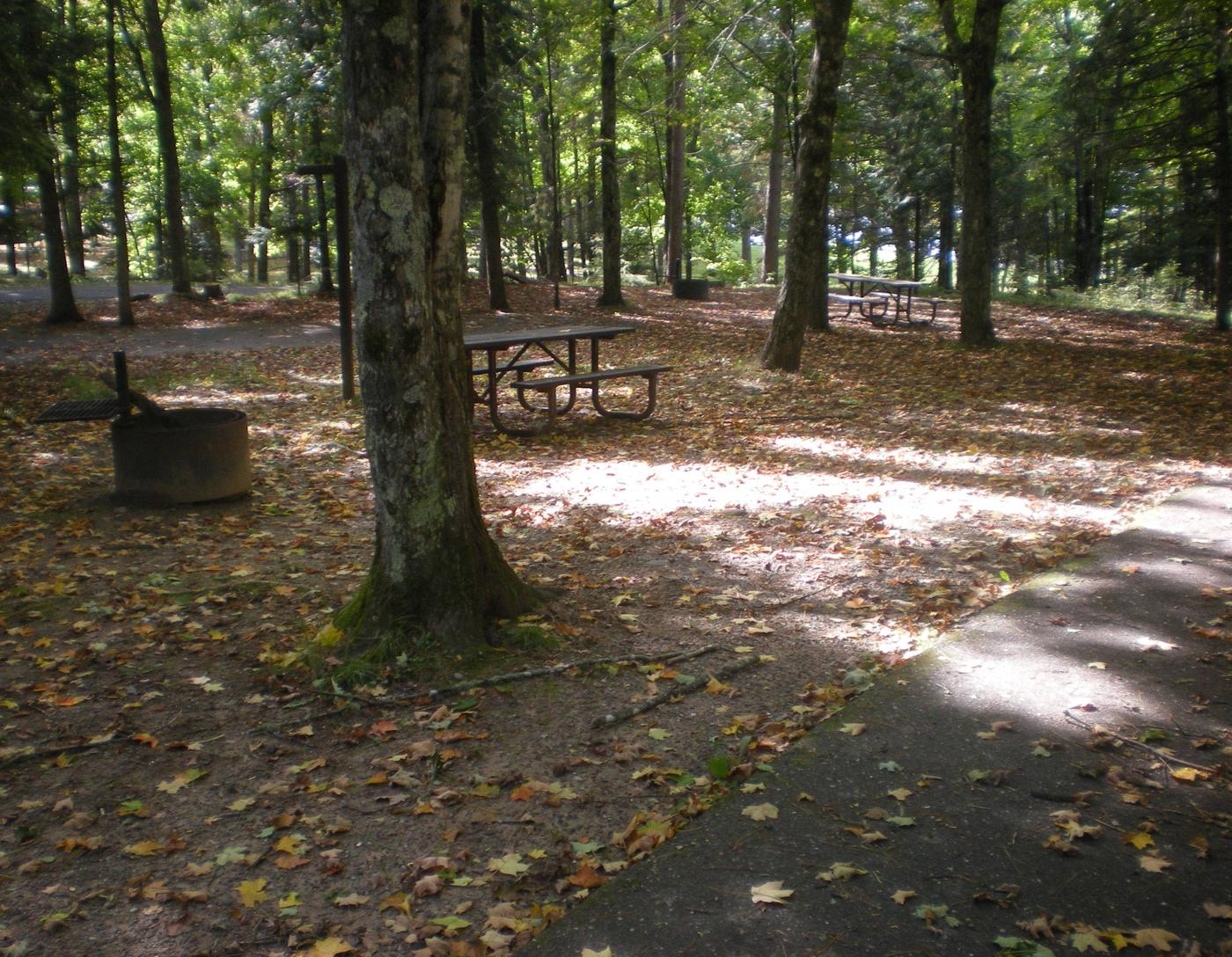 Left view of Lake Ottawa Campground campsite 30.