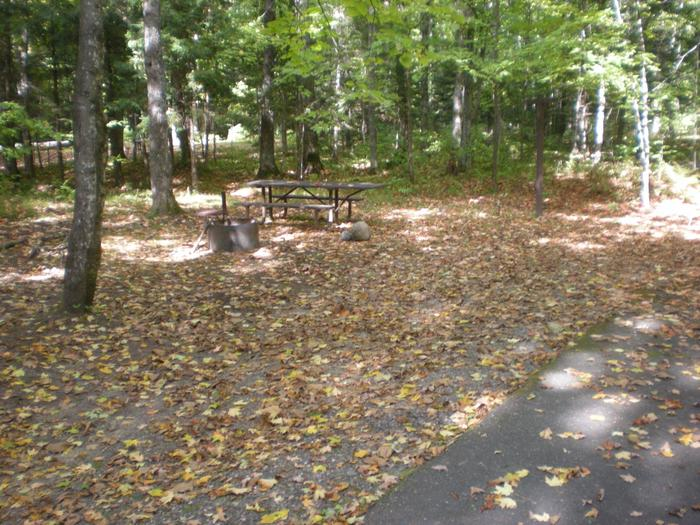 Left view of Lake Ottawa Campground campsite 25Left view of Lake Ottawa Campground campsite 25.