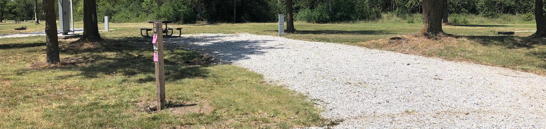 Campsite Site 38