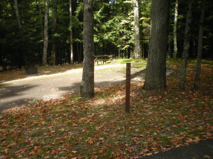 View of Lake Ottawa Campground campsite 11View of Lake Ottawa Campground campsite 11.