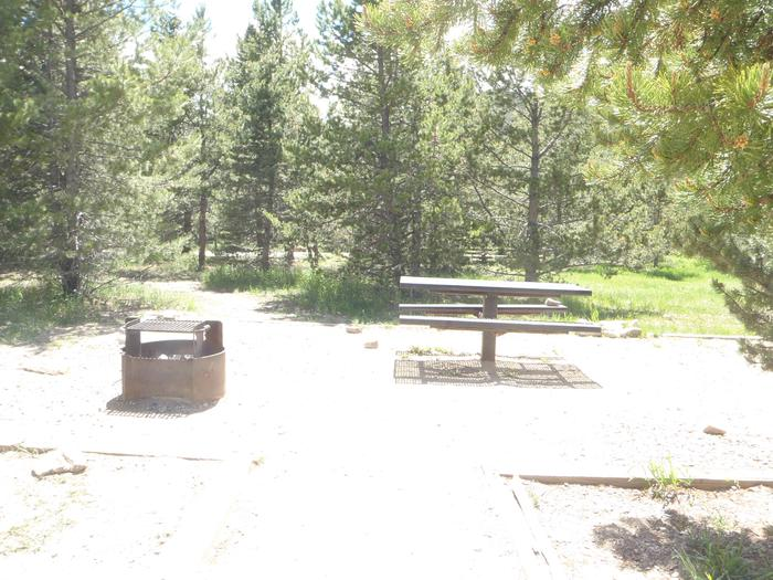 May Queen Campground, site 15 picnic table and fire ring