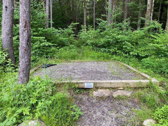 Grout Pond Campsite # 1 tent padSite # 1 tent pad
