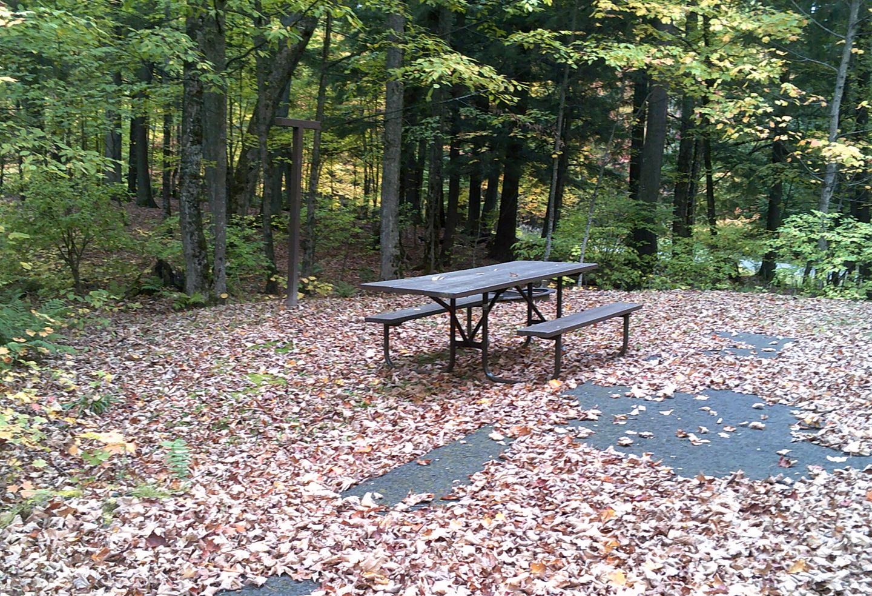 Left view of Sylvania (Clark Lake) Campground campsite 25Left view of Sylvania (Clark Lake) Campground campsite 25.