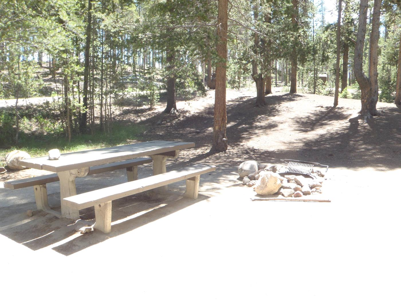 Molly Brown Campground, site 2 picnic table and fire ring
