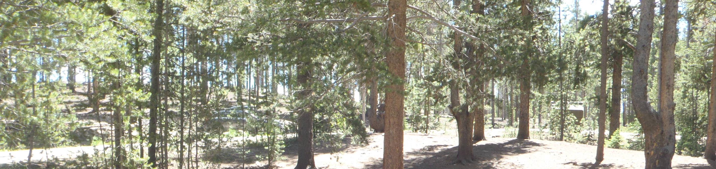 Molly Brown Campground, site 2