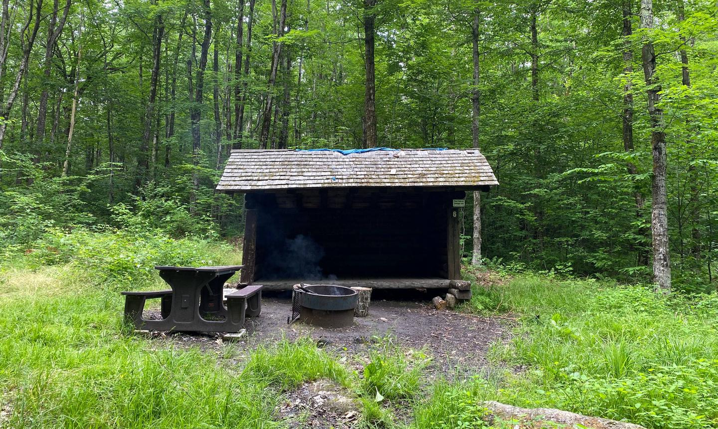 leanto, picnic table, and fire ringcampsite 6