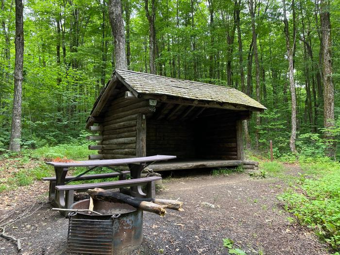 lean-to, picnic table, and fire ringcampsite 8