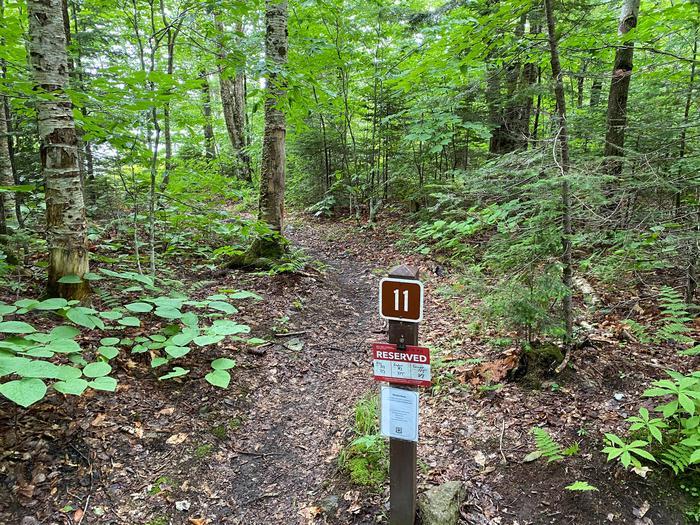 path to site 11campsite 11