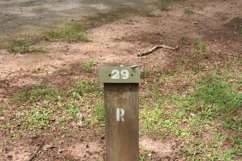 Campsite 29