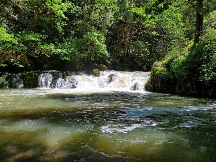 Swimming AreaCavitt Creek Falls
