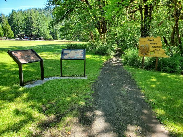 trailheadSawmill trail entrance