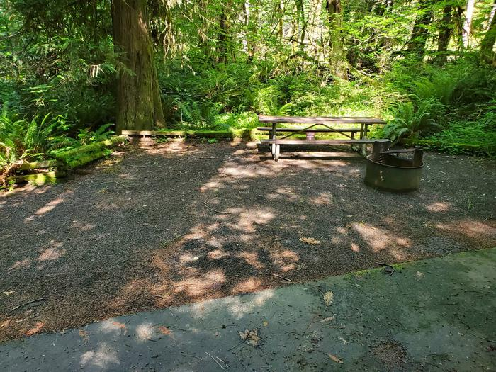 Site 2 table and pitSite 2
