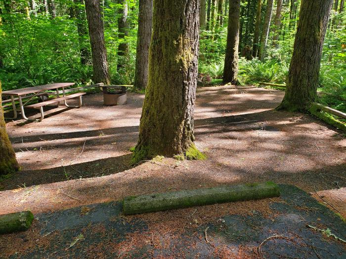 Site 4 table and pitSite 4