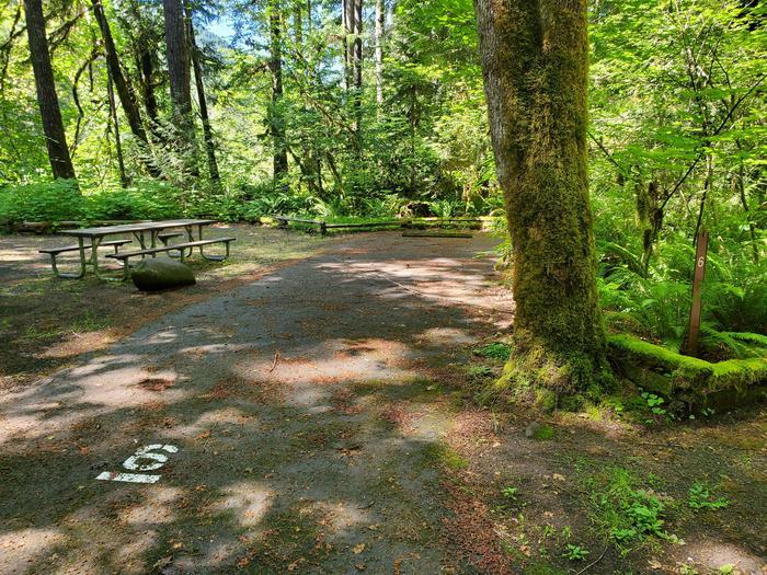 Site 6 DrivewaySite 6