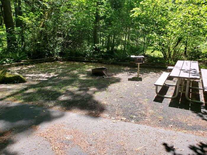 Site 8 table, grill, and pitSite 8