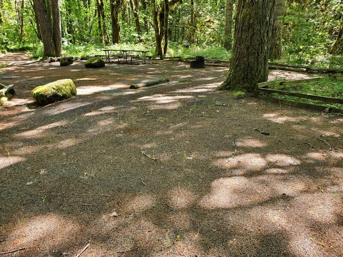 Site 10 tent padSite 10