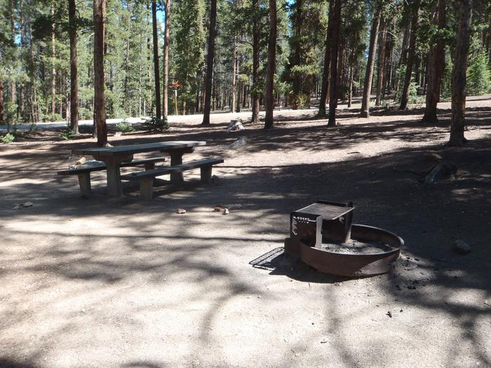 Baby Doe Campground, site 12 picnic table and fire ring