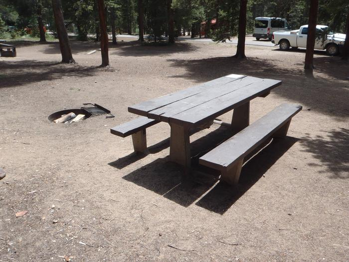 Baby Doe Campground, Site 20 picnic table and fire ring