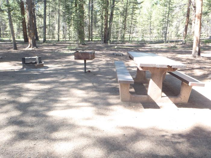 Father Dyer Campground, Site 9 picnic table, grill, and fire ring