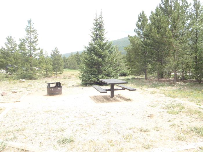May Queen Campground, site 10 picnic table and fire ring