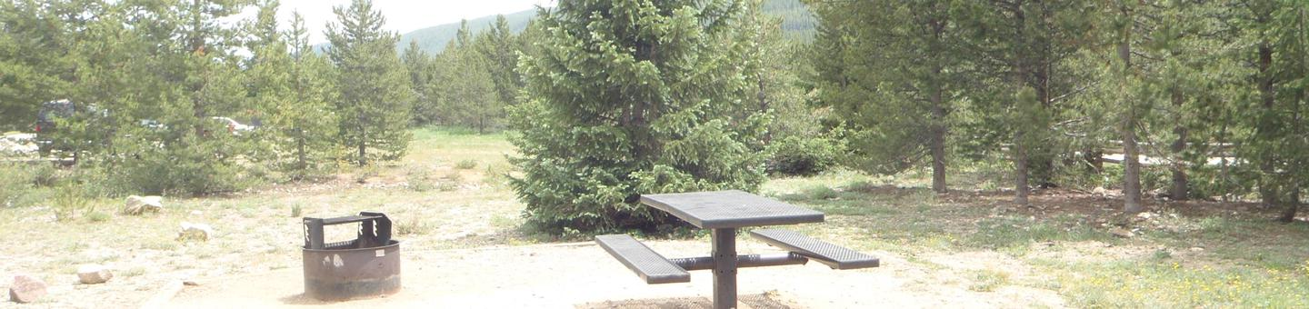 May Queen Campground, site 10