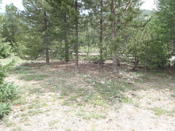 May Queen Campground, site 10 clearing
