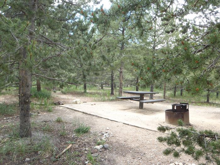 May Queen Campground, site 19  picnic table and fire ring 2