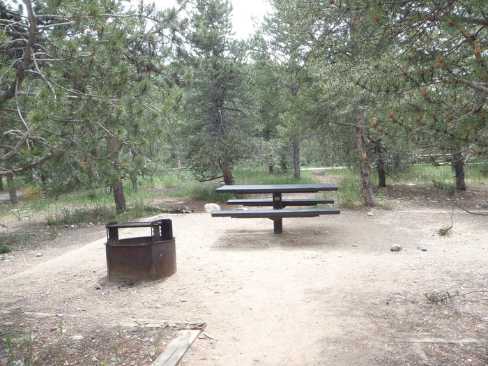 May Queen Campground, site 19 picnic table and fire ring 3