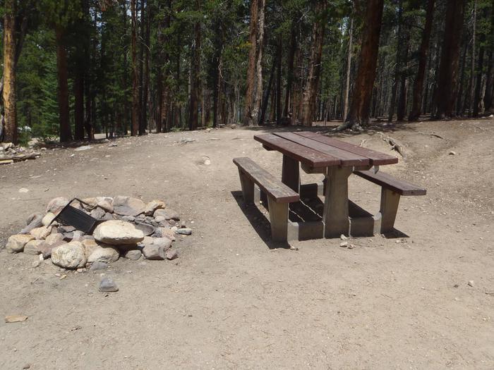 Molly Brown Campground, site 1 picnic table and fire ring 6