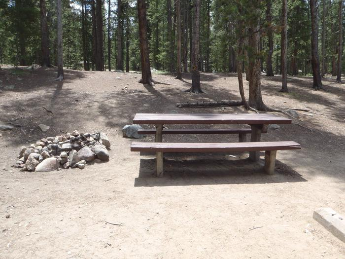 Molly Brown Campground, site 5 picnic table and fire ring