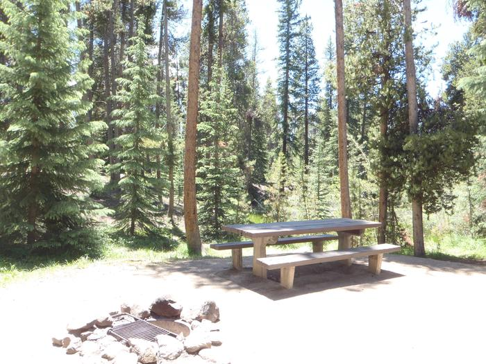 Molly Brown Campground, site 18 picnic table and fire ring