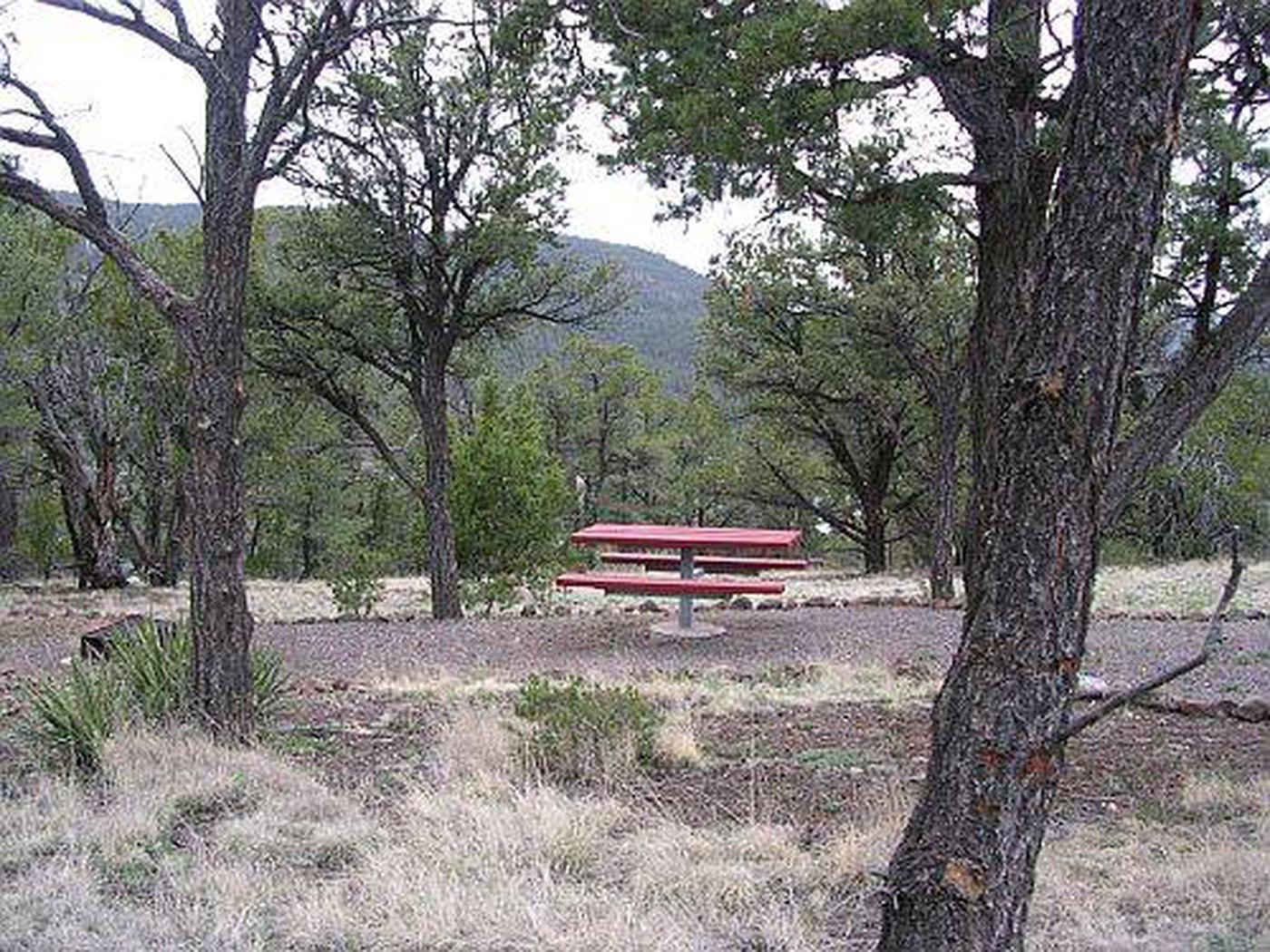 Pinon Campground sample picnic table