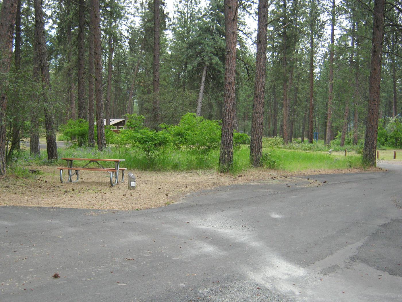 Pull through site with trees in the backgroundSite 37, Narrow parking